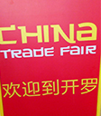 chines business in egypt